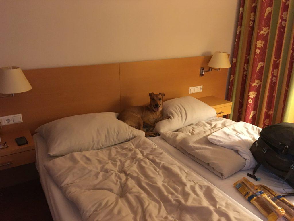 Emily na posteli